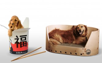 Szenen eines Hundelebens. In China (links) und Europa