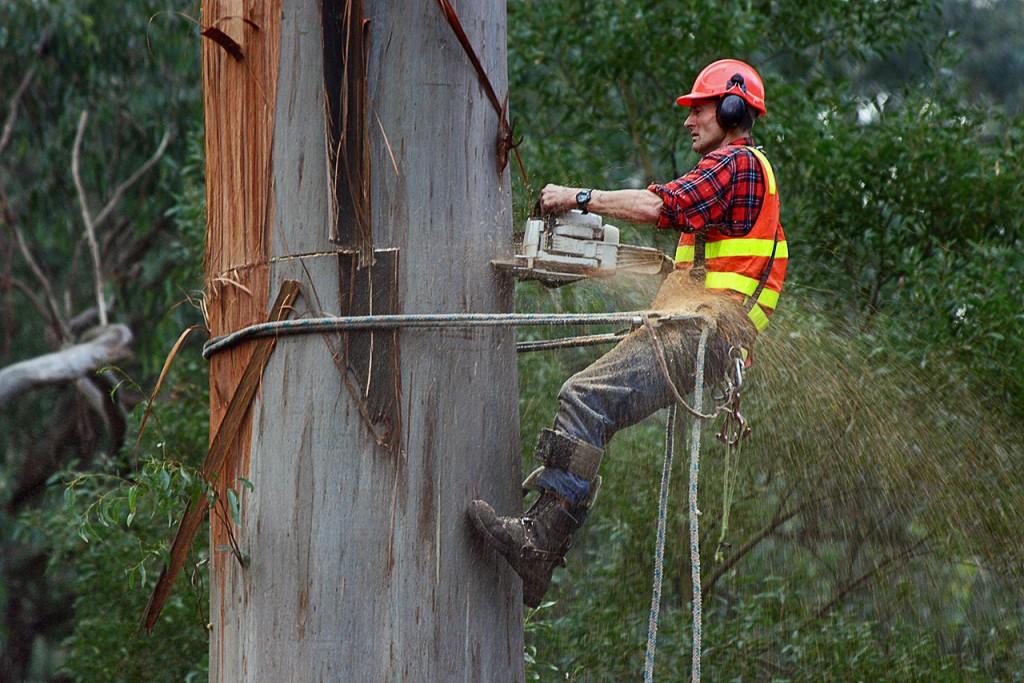 Kein Job wie jeder andere (Foto: wikipedia/jjron)!