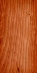 Der warme, rotbraune Ton  des Kernholzes der Lärche macht dieses Holz wieder attraktiv. Bild: Wikipedia
