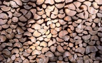 Holz und Jobs
