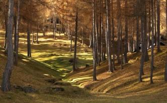 Der Herbst in Tirol ist eine wunderschöne Jahreszeit... (Copyright: Pistone Bernardo)