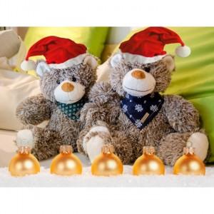 Eine mögliche Geschenksidee zu Weihnachten, die vor allem bei Kindern großen Anklang findet...